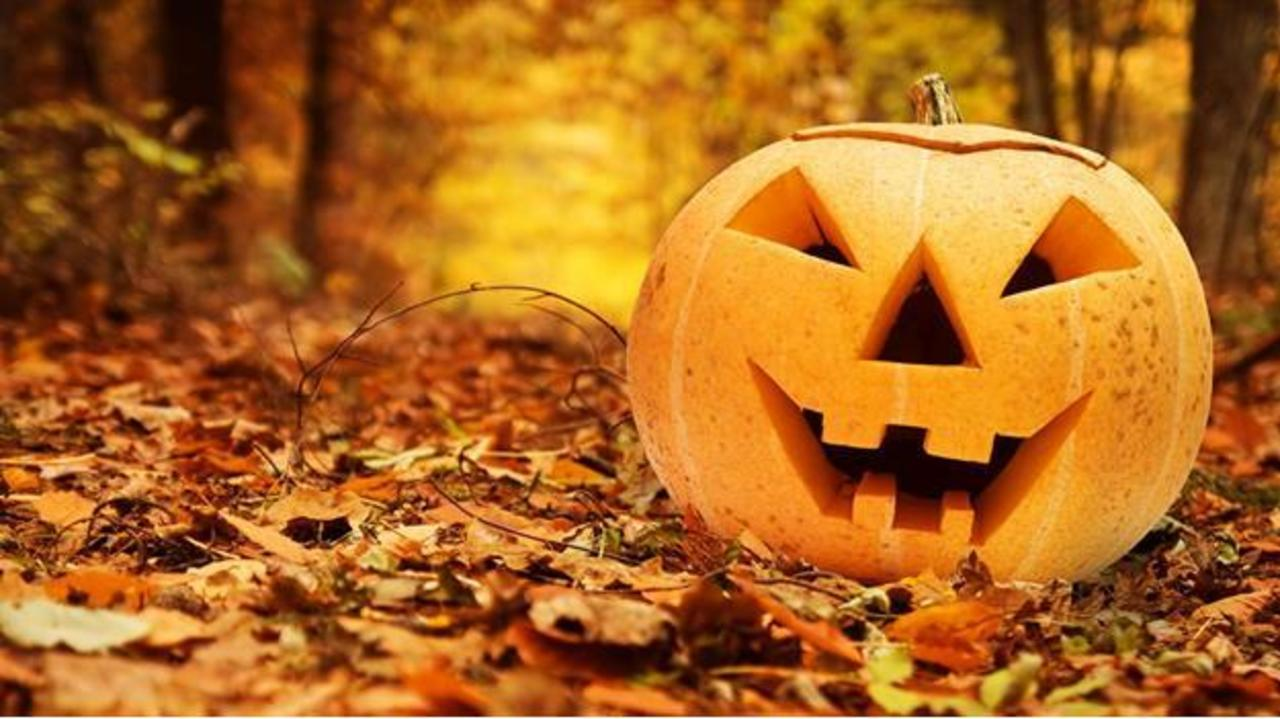 enjoy halloween fun this weekend
