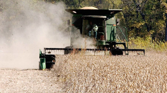 South Dakota Corn And Soybean Production Forecast To Be Up