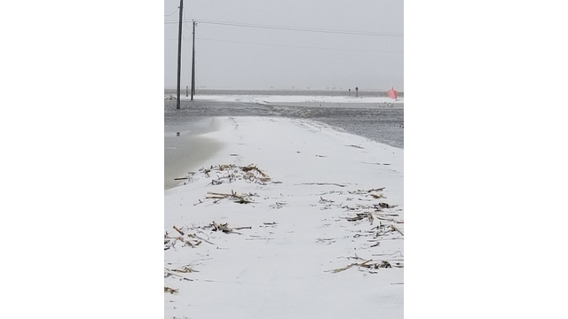 Flooded driveway in blizzard north of Renner uShare_1555022208290.jpg.jpg