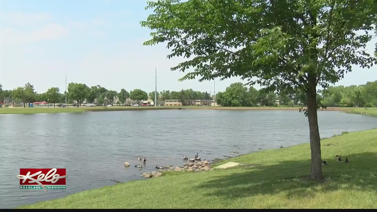Lifeguards play role in helping save life at Covell Lake